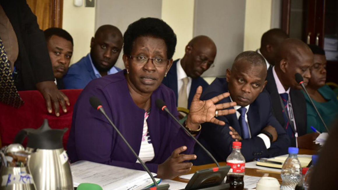 Diana Atwine before a parliamentary committee