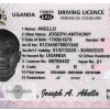 Drivers' Licensing