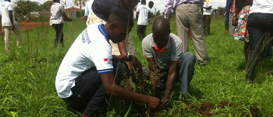 Journalists plant a tree during launch of their afforestation drive in Buliisa. Courtesy photo
