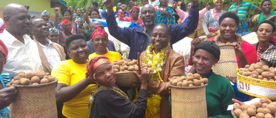 David Bahati distributing Irish potatoes to his voters