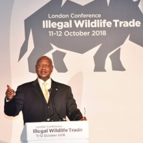 President Museveni addresses the International Conference on Illegal Wildlife Trade in London on Thursday. PPU Photo